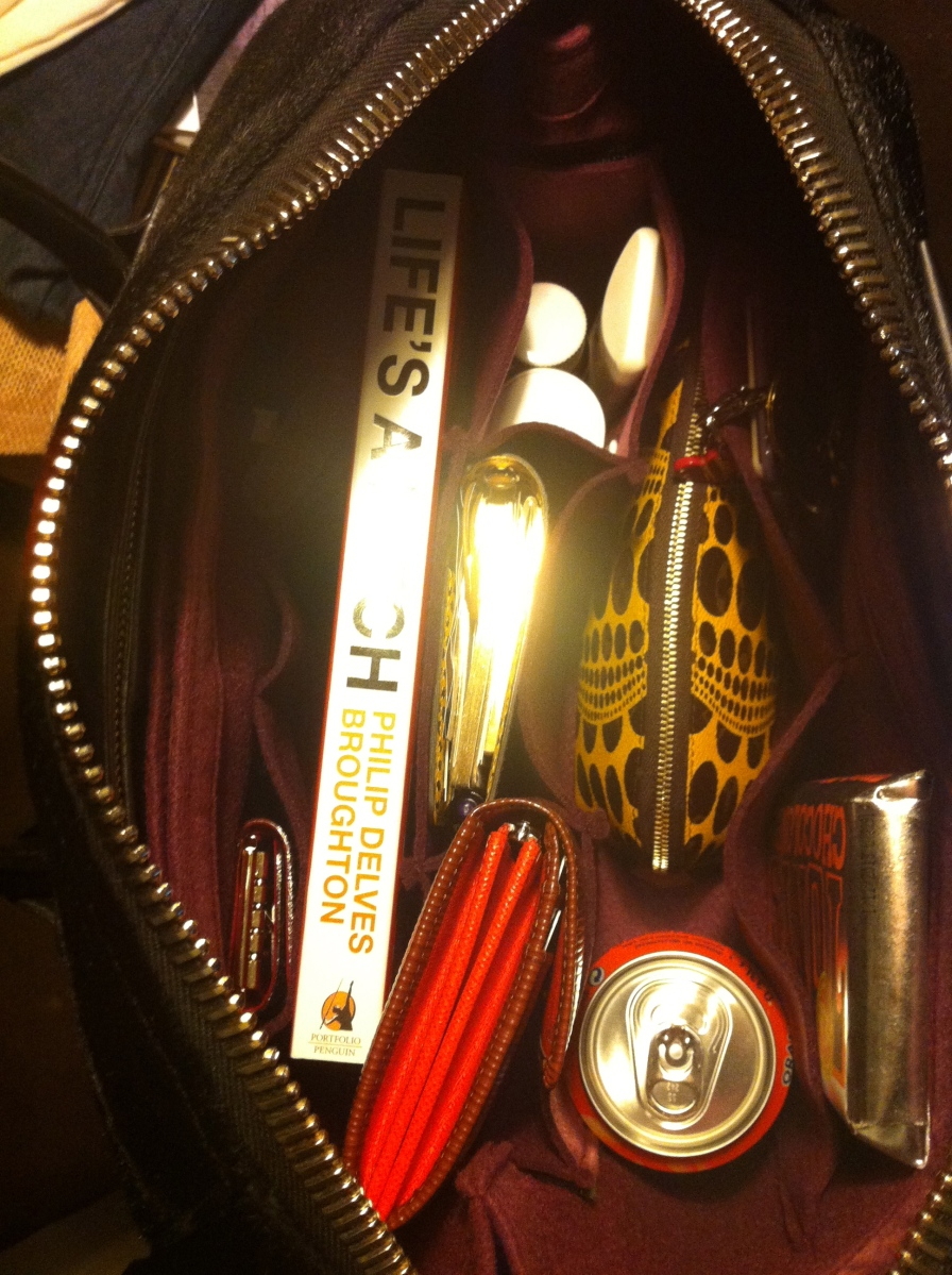 My favorite purse organizer: Samorga